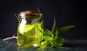 Werner's Best CBD oil